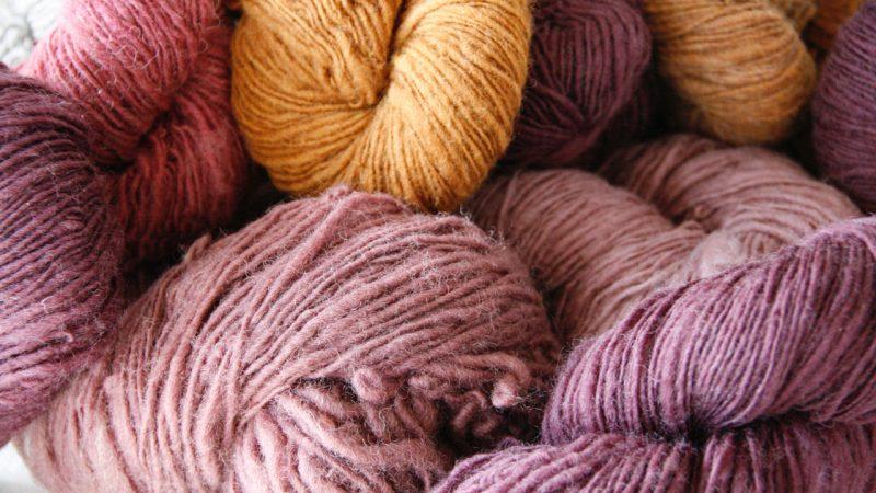 Wolle, Wolle, Wolle – vom Schaf zum Pullover